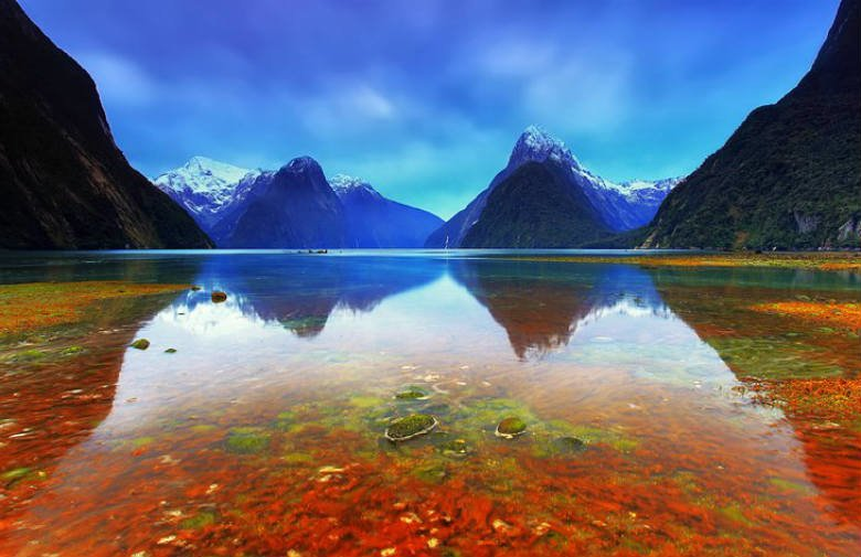 Fiordland National Park and Milford Sound, South Island