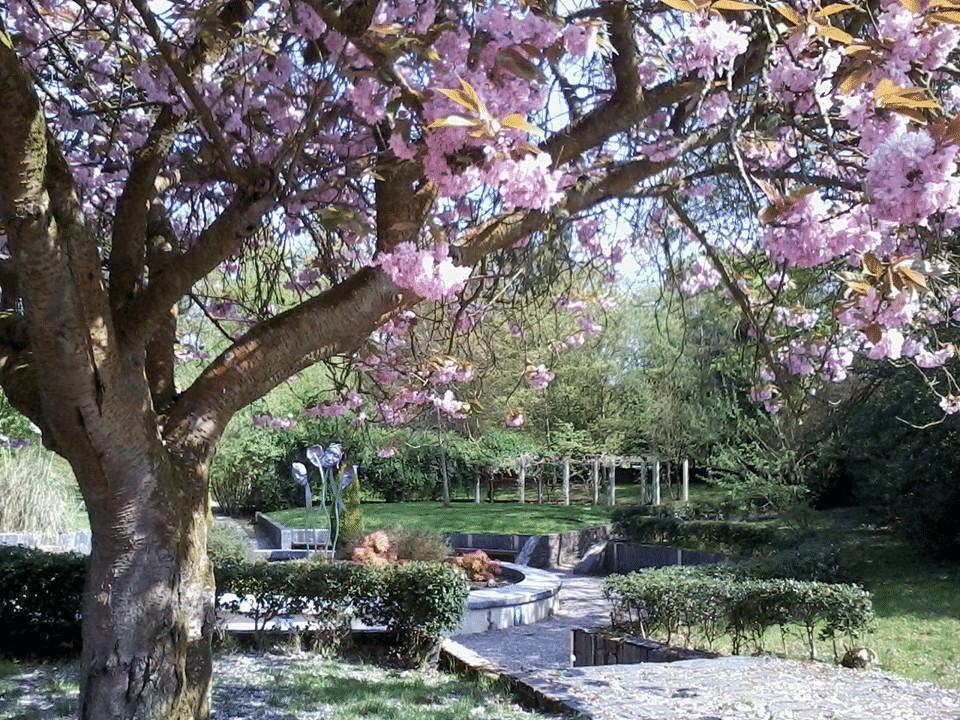 St-Columb's-Park-que-hacer-en-derry