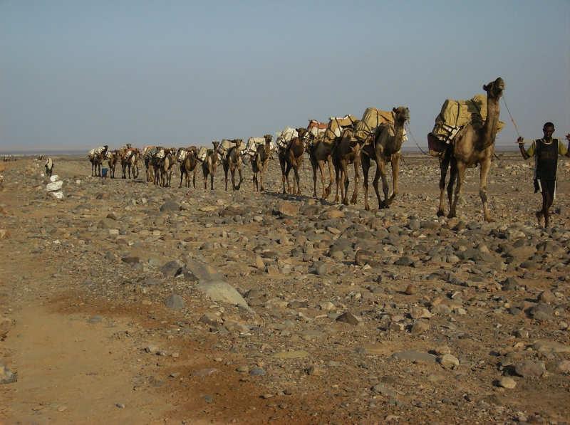 Depresion Danakil - que ver en etiopia