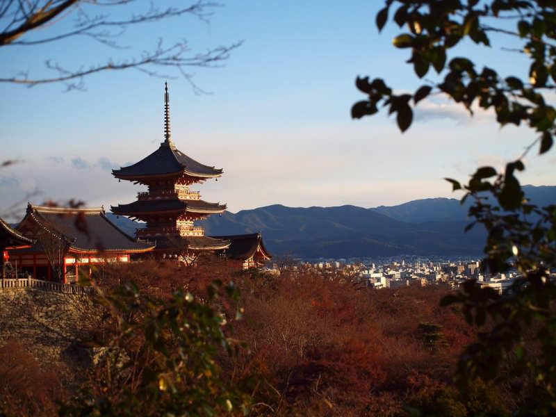 Kyoto - que ver en japon