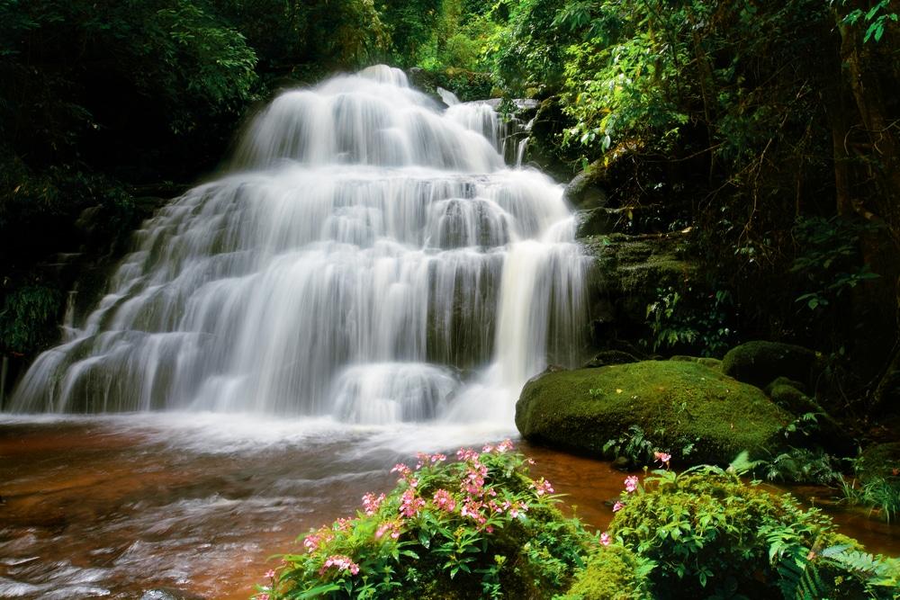 Cascada Man Daeng