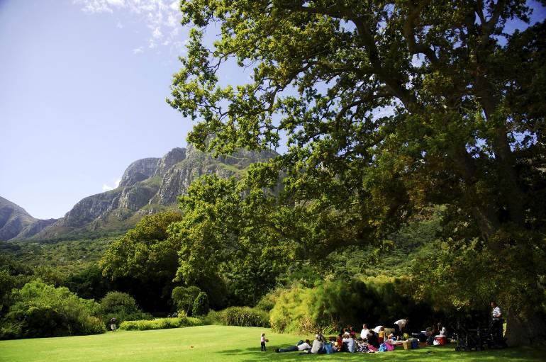 Hacer un picnic tranquilo (o musical) en los jardines botánicos prístinos