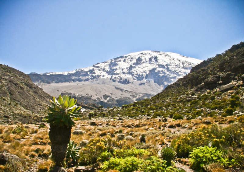 Monte-Kilimanjaro-National-Park-que-hacer-en-tanzania