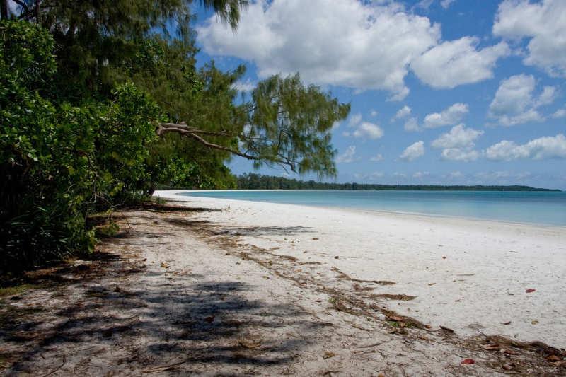 Isla de Pemba - que ver en tanzania