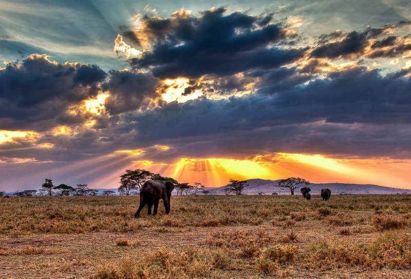 Parque-Nacional-del-Serengeti-que-ver-en-tanzania