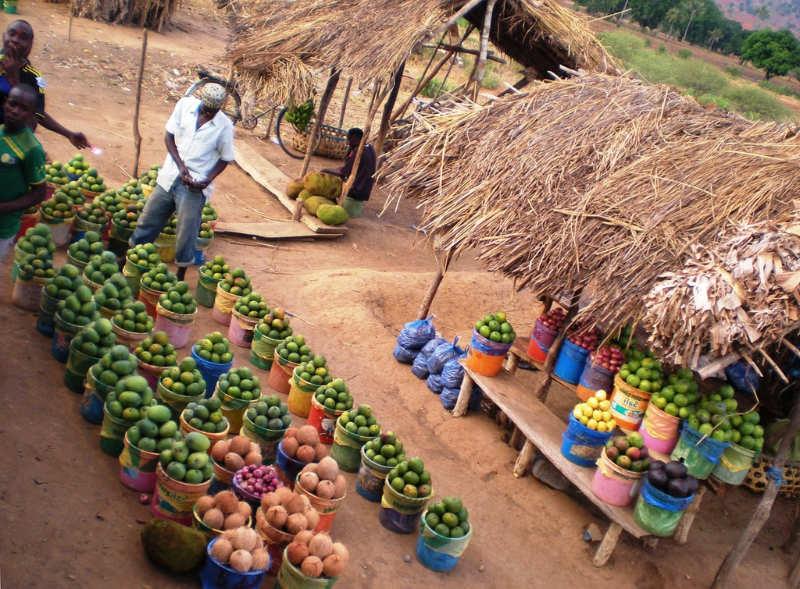 Arusha - que ver y hacer en tanzania