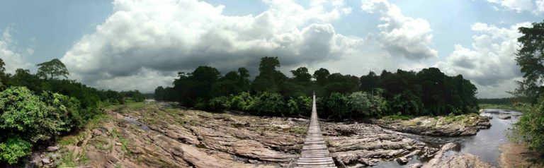 Korup-National-Park-que-ver-en-camerun