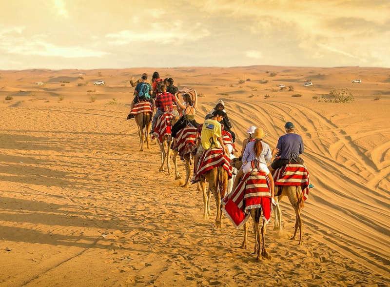 Paseo-en-camello-tours-en-dubai