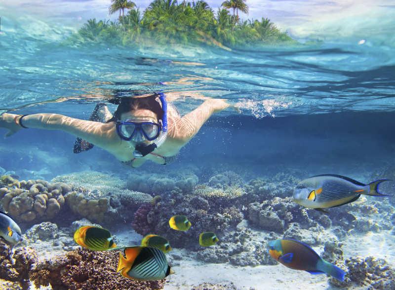 tour snorkel en bali