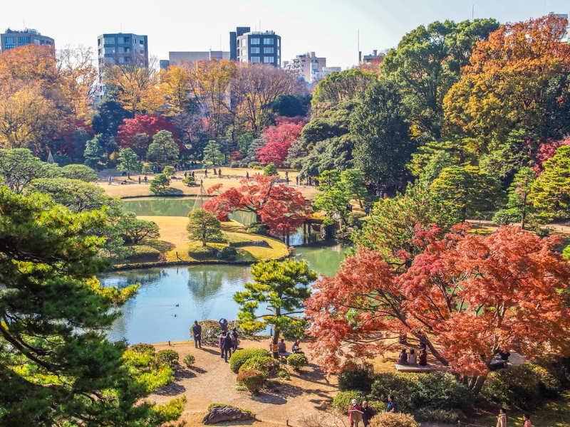 Jardín Rikugien - que ver en Tokio