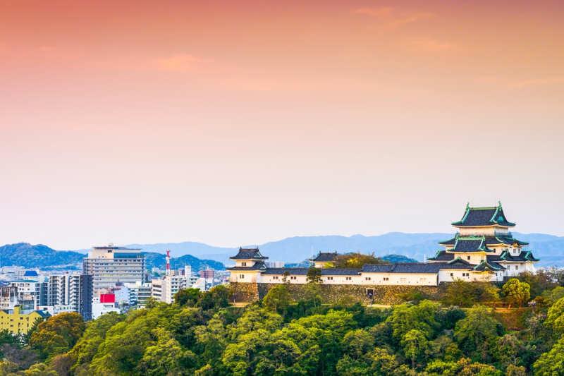Ciudad de Wakayama - tours desde osaka