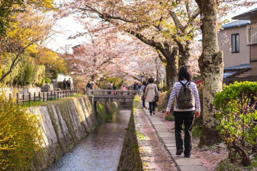 Camino del filósofo - que hacer y ver en Kioto