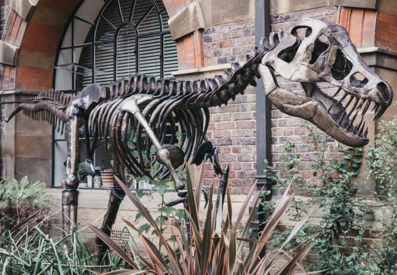 Museo de Ciencias de la Tierra de Sedgwick
