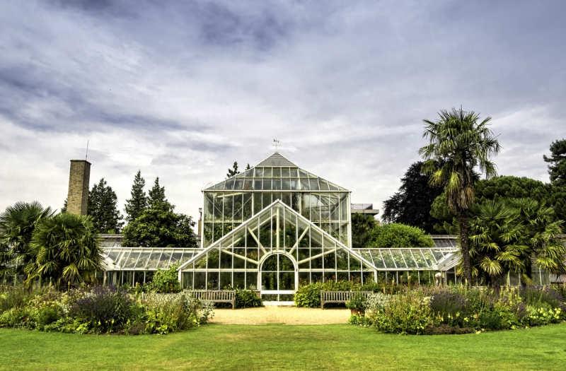 Jardín Botánico de la Universidad de Cambridge