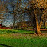 25 Mejores Lugares Qué Ver en Manchester