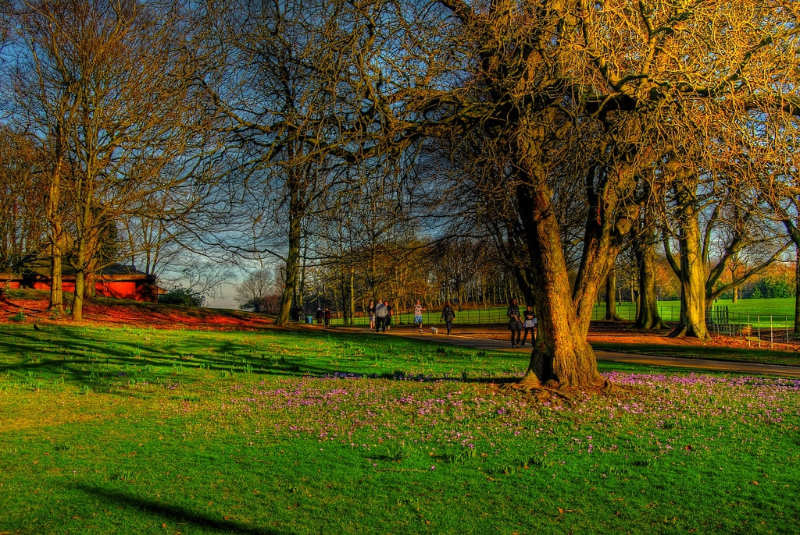 Heaton-Park-Manchester