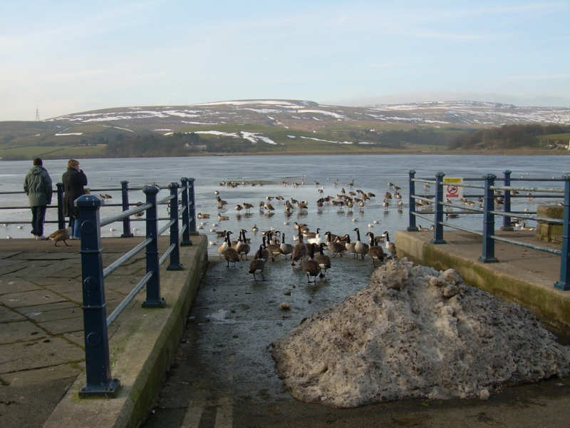 Hollingworth-Lake-Country-Park