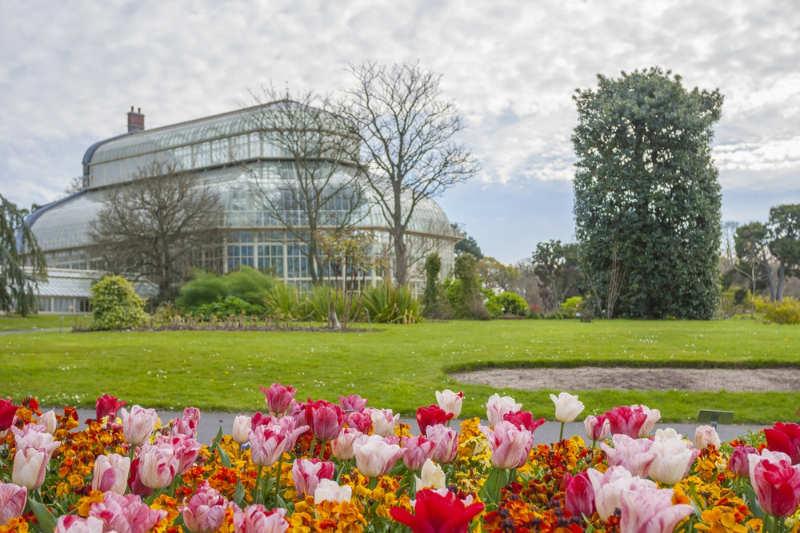 Los jardines botánicos nacionales de Dublín - que ver en dublin