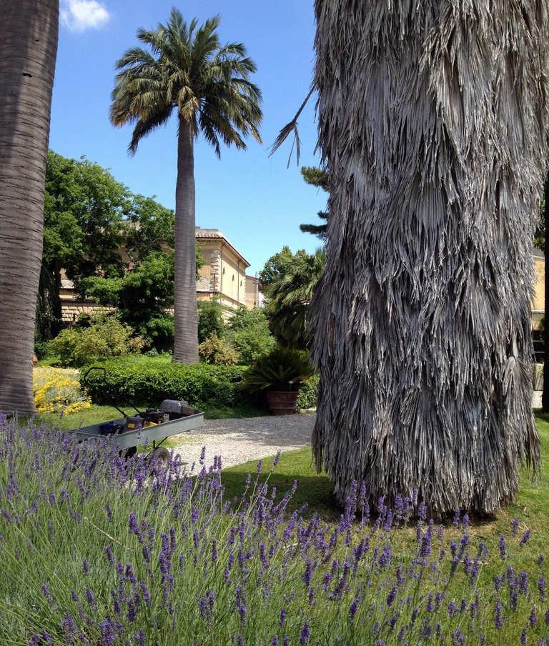 Jardines Botánicos de la Universidad de Pisa