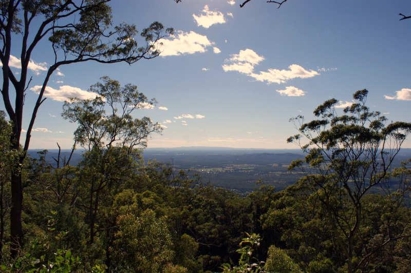 Monte tamborine gold coast