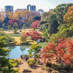 25 Mejores Lugares Que Ver en Tokio, Japón