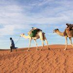 Lugares que ver en Marruecos
