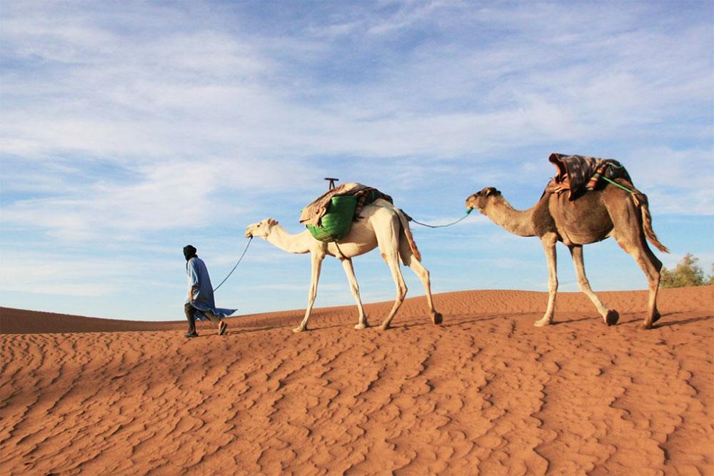 hombre con camello sahara